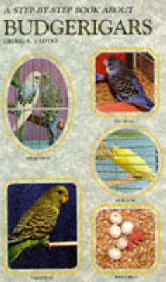 Step-by-step Book About Budgerigars (Paperback)