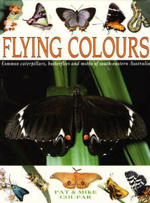 Flying Colours: Common Caterpillars, Butterflies and Moths of South-eastern Australia (Hardback)