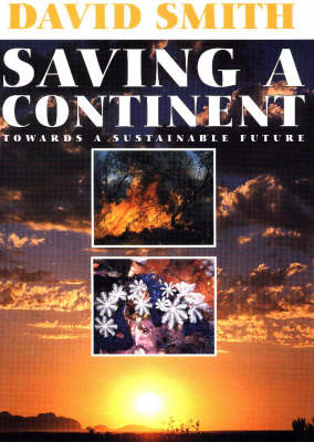 Saving a Continent: Towards a Sustainable Future (Paperback)