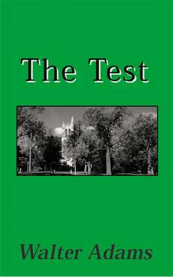 The Test - Michigan & the Great Lakes (Paperback)