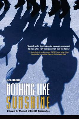 Nothing Like Sunshine: A Black-Jewish Friendship in the Aftermath of the MLK Assassination (Paperback)