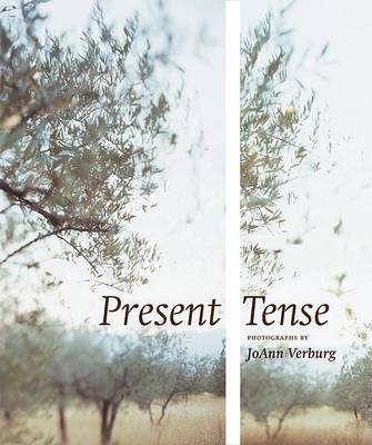 Present Tense: Photographs by Joann Verburg (Hardback)