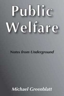 Public Welfare: Notes from Underground (Hardback)