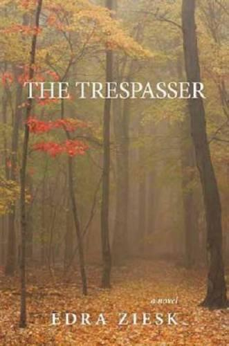 The Trespasser: A Novel (Hardback)