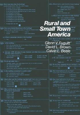 Rural and Smalltown America - The population of the United States in the 1980s: a census monograph series (Hardback)