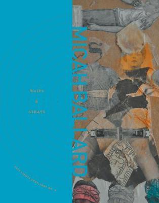 Waifs and Strays - City Lights Spotlight (Paperback)