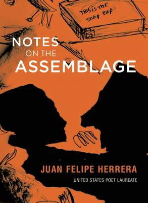 Notes on the Assemblage (Hardback)