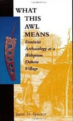 What This Awl Means: Feminist Archaeology at a Wahpeton Dakota Village (Paperback)