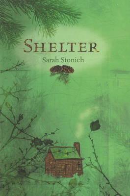 Shelter (Hardback)