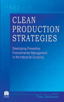 Clean Production Strategies Developing Preventive Environmental Management in the Industrial Economy (Hardback)