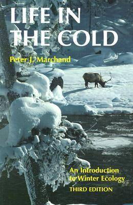 Life in the Cold (Paperback)