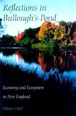 Reflections in Bullough's Pond (Hardback)