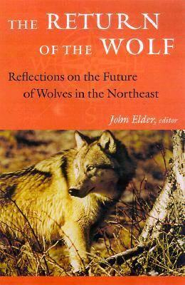 The Return of the Wolf (Hardback)