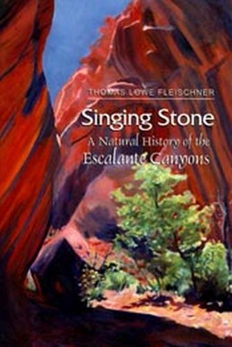 Singing Stone (Paperback)