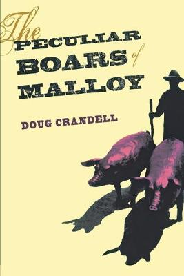 The Peculiar Boars of Malloy (Paperback)