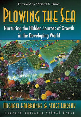 Plowing the Sea: Nurturing the Hidden Sources of Growth in the Developing World (Hardback)