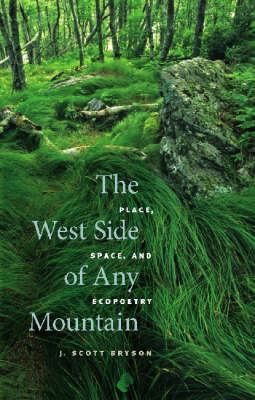 The West Side of Any Mountain: Place, Space, and Ecopoetry (Hardback)