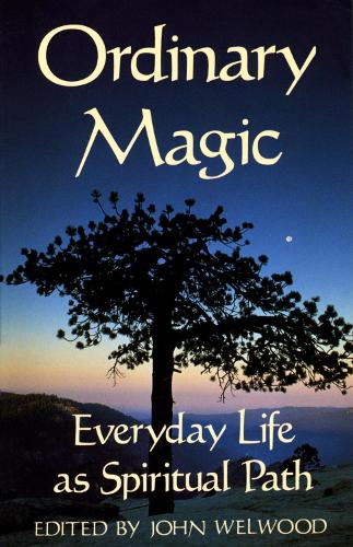 Ordinary Magic (Paperback)