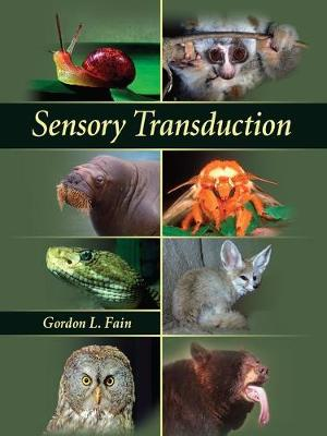 Sensory Transduction (Hardback)