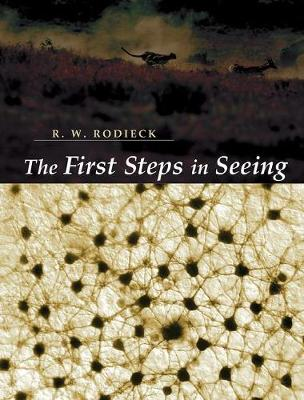 The First Steps in Seeing (Hardback)
