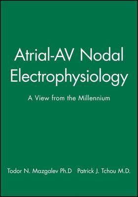 Atrial-AV Nodal Electrophysiology: A View from the Millennium (Hardback)