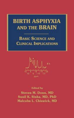 Birth Asphyxia and the Brain: Basic Science and Clinical Implications (Hardback)