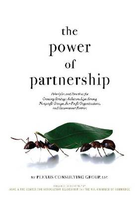 The Power of Partnership: Principles and Practices for Creating Strategic Relationships Among Nonprofit Groups, For-Profit Organizations, and Government Entities (Paperback)