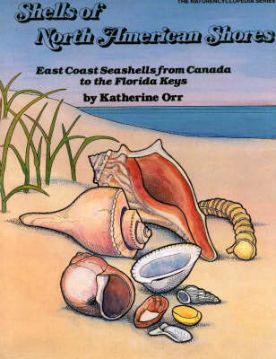 Shells of North American Shores (Paperback)