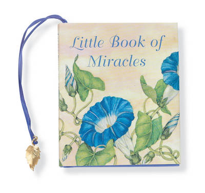 Little Book of Miracles - Petites S. (Hardback)