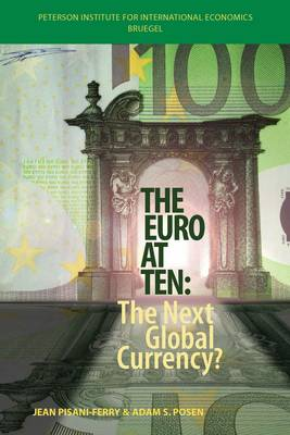 The Euro at Ten - The Next Global Currency? (Paperback)