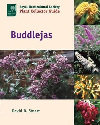 Buddlejas (Hardback)