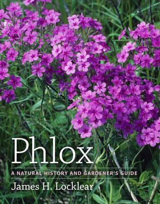 Phlox a Natural History and Gardener's Guide (Hardback)