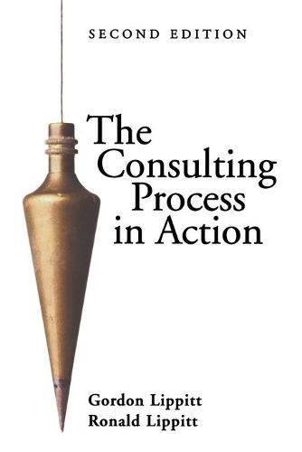 The Consulting Process in Action (Paperback)