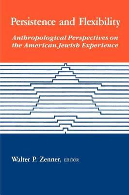 Persistence and Flexibility: Anthropological Perspectives on the American Jewish Experience - SUNY series in Anthropology and Judaic Studies (Paperback)
