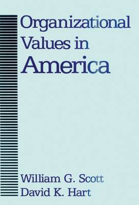 Organizational Values in America (Hardback)