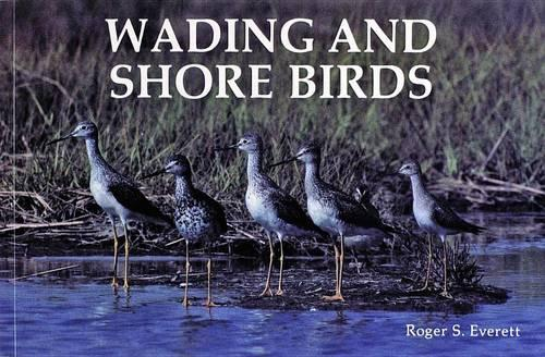 Wading and Shore Birds: A Photographic Study (Paperback)