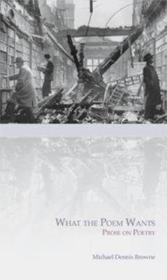 What the Poem Wants (Paperback)