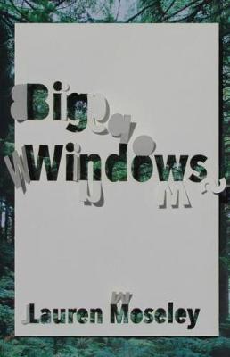 Big Windows - Carnegie Mellon Poetry Series (Paperback)