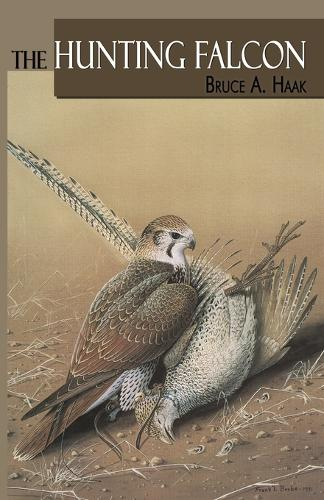 Hunting Falcon, The (Paperback)