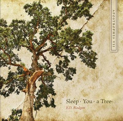 Apostrophes VII: Sleep, You, a Tree - cuRRents (Paperback)