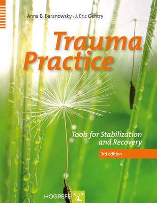 Trauma Practice: Tools for Stabilization and Recovery (Paperback)