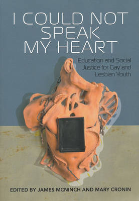 I Could Not Speak My Heart: Education and Social Justice for Gay and Lesbian Youth (Paperback)