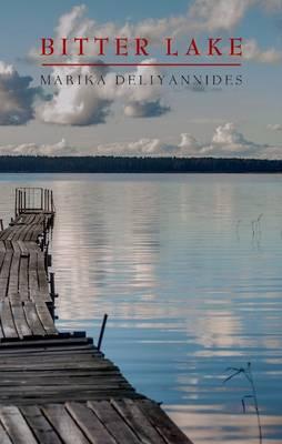 Bitter Lake: A Novel (Paperback)