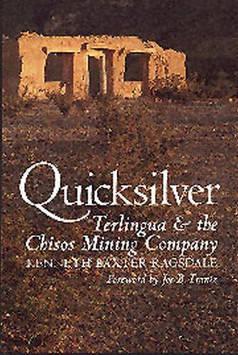 Quicksilver (Paperback)