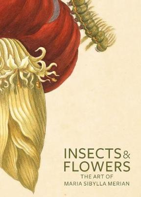 Insects and Flowers: The Art of Maria Sibylla Merian (Paperback)