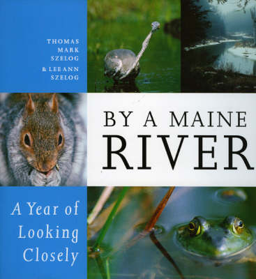 By a Maine River: A Year of Looking Closely (Hardback)