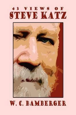43 Views of Steve Katz (Paperback)