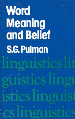 Work Meaning and Belief (Hardback)