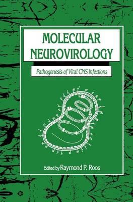 Molecular Neurovirology: Pathogenesis of Viral CNS Infections (Hardback)