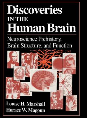 Discoveries in the Human Brain: Neuroscience Prehistory, Brain Structure, and Function (Hardback)